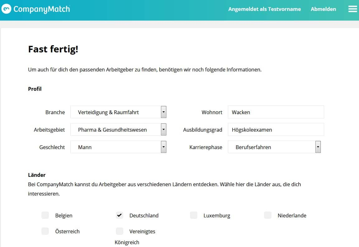CompanyMatch Screenshot Abfragemaske