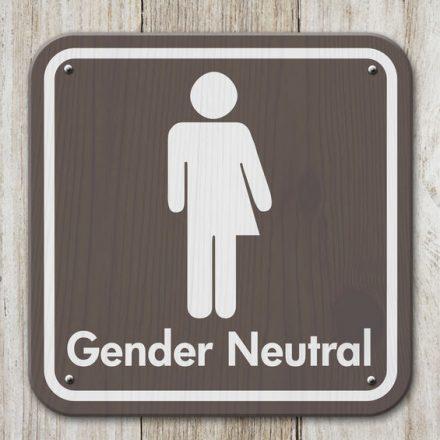 """Auswirkungen des dritten Geschlechts """"divers"""" auf Arbeitgeber und Personalabteilungen in der Praxis"""