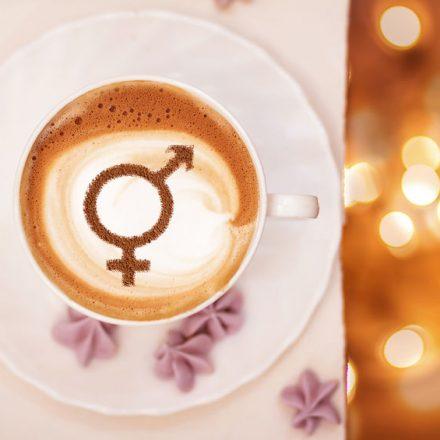 Genderwahnsinn, Frauen diskriminierende Algorithmen und das Streben nach Gleichbehandlung