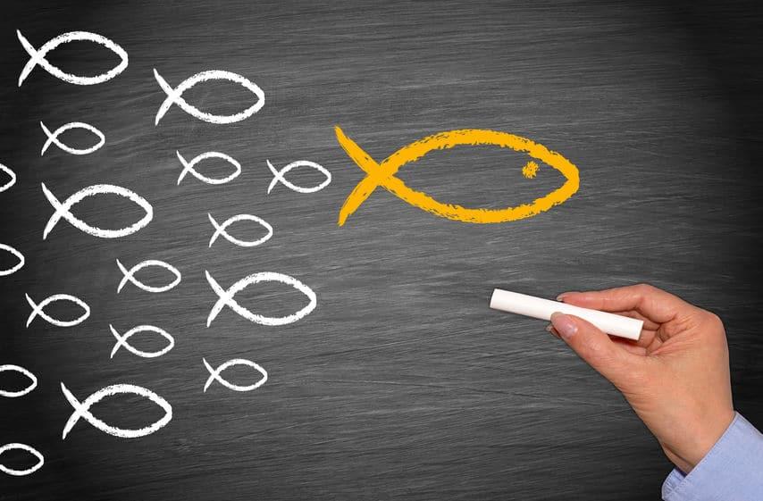 Corporate Influencer im Personalmarketing einsetzen und die Arbeitgebermarke stärken