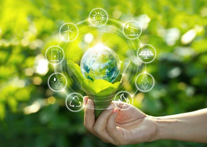 Green HRM - Klimaschutz voranbringen durch ökologisch nachhaltiges Personalmanagement