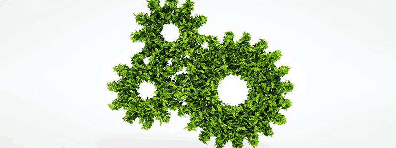 Green HRM Titelbild