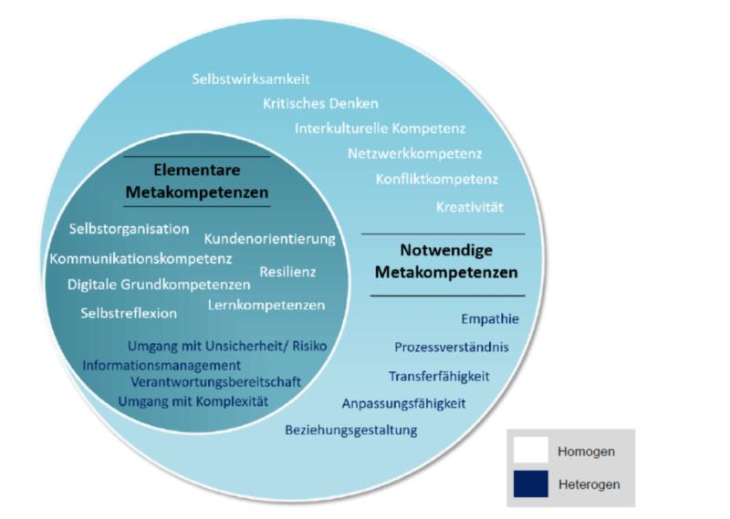 Grafik Metkompetenzen von MENTUS
