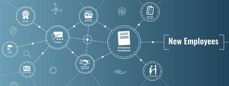 Titelbild: Startup yuccaHR - virtuelles digitales Onboarding