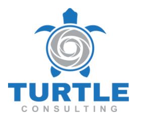Turtle Consulting e.K.