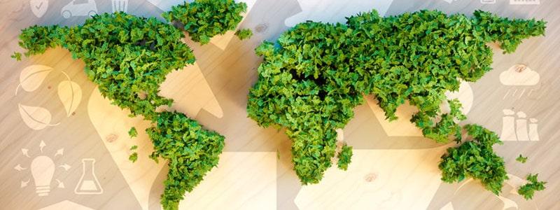 GuudCard - HR-Startup für nachhaltige Mitarbeiter-Benefits